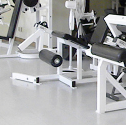 Picture of                                                                                                                                                                                                                                                                                                                                                                                                                                                                                                                                                                                    Russ Kisby Physical Activity and Health Promotion Laboratory